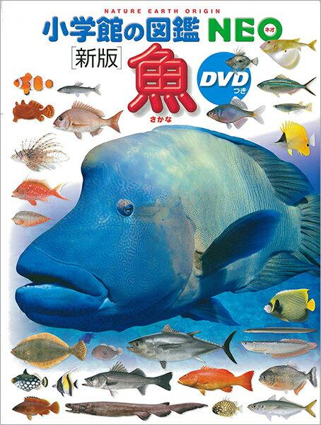 【エントリー+5倍】【高ポイント還元】小学館の図鑑NEO 魚(DVD付き)【ゆうパケット(追跡あり)送料無料】