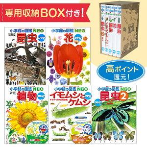【専用BOX付セット!】小学館の図鑑NEO植物と昆虫のイチオシ5冊セット 【宅配便(追跡あり)送料無料】