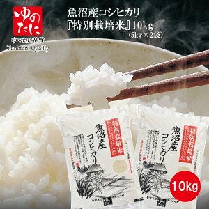 令和元年産 魚沼産コシヒカリ 特別栽培米 10kg(5kg×2) 新潟 魚沼 精米 こしひかり 送料無料