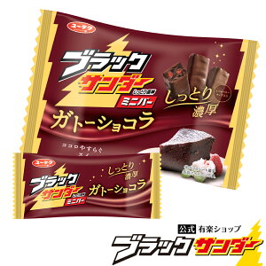 ブラックサンダーミニバー ガトーショコラ チョコ スイーツ お菓子 ブラック サンダー 個包装