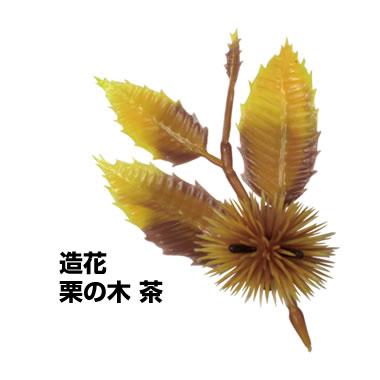 栗の木 茶 10個入