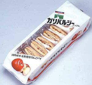 ガリバルジー アップル 10枚★国産小麦粉使用★三育フーズ