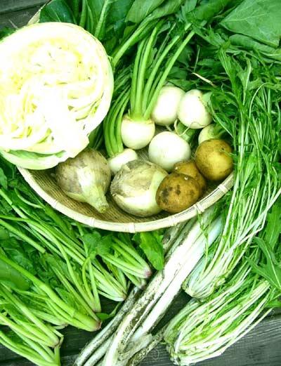 定期購入【隔週】お届け送料無料・無選別わけあり野菜有機家の無農薬栽培2000円セット×5回分夏季は冷蔵便(216円別途)でお届けいたします。