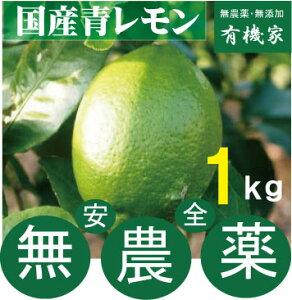 国産無農薬青レモン1kg★有機JAS規定を守って栽培★奈良産★1kgは約6個〜7個です。【注】多少黄色くなっています。