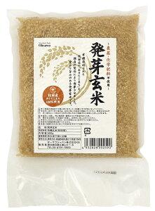 発芽玄米  500g★有機玄米(国内産)