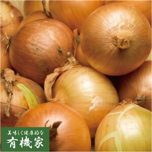 北海道産有機玉ねぎ 10kg★有機JAS(無農薬・無添加)