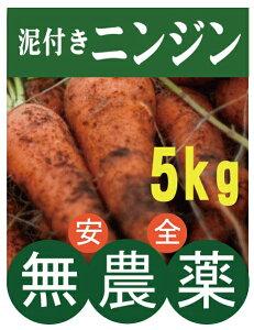 無農薬人参★ニンジン(泥つき)5kg★千葉産★無農薬・無添加