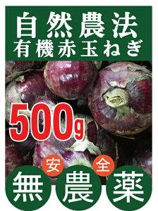 有機赤玉ねぎ 500gパック★有機JAS認証★香川県産★赤玉ねぎは生食にむいています。