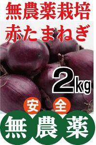 無農薬 赤たまねぎ 2kg★無農薬・無添加★和歌山県産