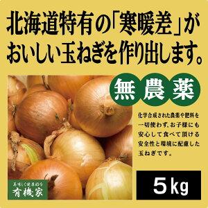 有機玉ねぎ 5kg★有機JAS★北海道産 無農薬・無添加