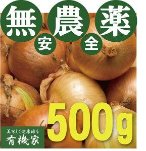 無農薬玉ねぎ 500g★無農薬・無添加★兵庫県淡路島産