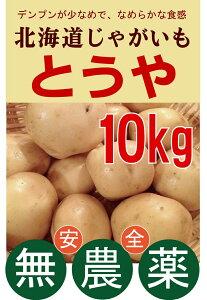 無農薬じゃがいも とうや 10kg 無農薬・無添加・芽止め処理無し★北海道中富良野町産