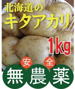 無農薬じゃがいも キタアカリ 1kg ★ 無農薬・無添加 ★北海道産★芽止め処理無し