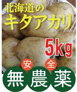無農薬じゃがいも キタアカリ 5kg ★ 無農薬・無添加 ★北海道産★芽止め処理無し