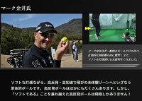 Lynxリンクス飛砲ボールHIHOゴルフボール1ダース(12球入)高反発超非公認球【LYNX】【ひほう】