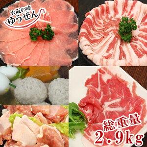 送料無料 ほっこり 鍋 セット 4種のお肉&鶏つみれ300g×3パックでたっぷり2.9kg!12〜14人分 大人数 一人鍋 鍋 セット 豚ロース 豚肩ロース 豚バラ 鶏もも肉 鶏つみれ 精肉 お肉