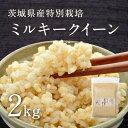 【29年産新米】茨城県産 特別栽培玄米「しらさぎミルキークイーン」(2kg)