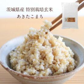 茨城県産 特別栽培玄米「あきたこまち」(10kg)