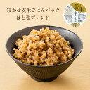 レトルトご飯 パック/ 寝かせ玄米 レトルト ごはんパック はと麦(はとむぎ/ハトムギ)ブレンド 48食 セット結わえるの…