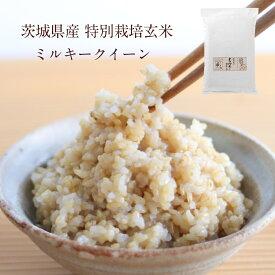 茨城県産 特別栽培玄米「しらさぎミルキークイーン」(5kg)