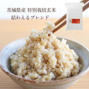 茨城県産 特別栽培玄米3種「 結わえるブレンド」(5kg) | 寝かせ 玄米 寝かせ玄米 ブレンド ブレンド玄米 寝かせ玄米ごはん ごはん ご飯 米 お米 おこめ ミルキークイーン こしひかり コシヒ