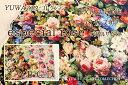 【美しく咲く花模様♪】手芸 生地 有輪商店公式 YUWA 花柄 YUWAマスターコレクション コットン EXTRA FINE ラスタース…