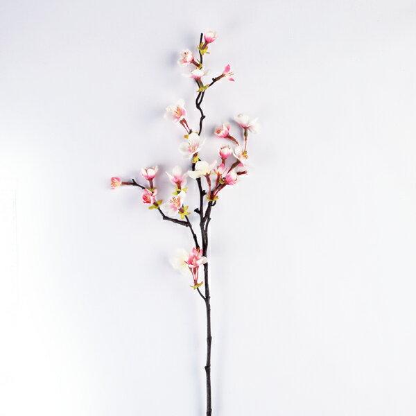 【みやび桜(小枝)】 GA0163