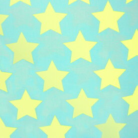 【数量5から】 生地 『ツイル teiban 星柄 ライトグリーン&水色』 KOKKA コッカ