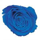 ■[プリザーブドフラワー]ミスティー 着色液 500ml ブルー
