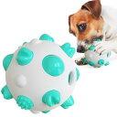 2020最新犬用 噛むおもちゃ 歯磨きボール 噛むボール ペット玩具 噛む玩具 知育玩具 犬 おもちゃ ボール おやつ ペ…