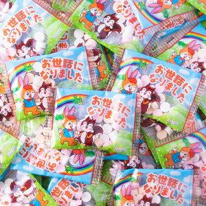 【 送料無料 】お世話になりました クッピーラムネ 50個 | メッセージ入り クッピー ラムネ カクダイ製菓 メッセージ ギフト プチギフト プレゼント 駄菓子 お菓子 菓子 挨拶 ありがとう お礼
