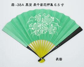 [扇-38A]黒塗扇子 表千家花押集 緑地白菊 6.5寸 化粧箱