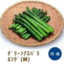 冷凍野菜 グリーンアスパラロング(M) 500g「アスパラガス 冷凍食品 業務用」【RCP】