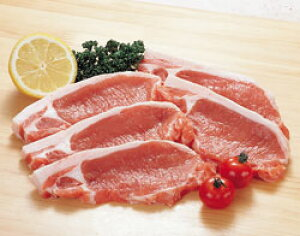 豚ロース・カツ用 100g × 5枚組 輸入5人分 5人前 5人用 生肉 豚肉 豚カツ用 とんかつ用 カット済 そのまま使える 調理具材 料理材料 家庭用 業務用 [店舗にもお勧め] [食卓にもお勧め] [冷凍食品