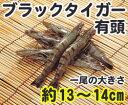 大盛 ブラックタイガーエビ 有頭60尾 1.3kg【輸入】「ブラックタイガー海老 えび 冷凍食品 業務用」【RCP】