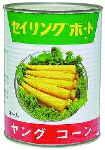 ヤングコーン缶 3号缶缶詰 調理具材 料理材料 野菜 業務用 [常温商品]