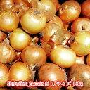 北海道産 たまねぎ Lサイズ 10kg 送料無料 贈り物 ギフト プレゼント 北海道 北海道野菜 北海道の味覚 玉ねぎ 玉葱 …