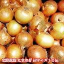 北海道産 たまねぎ Mサイズ 10kg 送料無料 贈り物 ギフト プレゼント お歳暮 クリスマス 北海道 北海道野菜 北海道の…