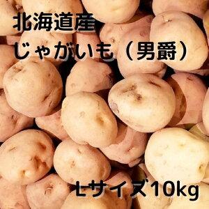 北海道産 じゃがいも だんしゃく Lサイズ 10Kg 送料無料 ギフト 贈り物 北海道野菜 ポテトサラダ フライドポテト カレー 肉じゃが 男爵 男爵芋