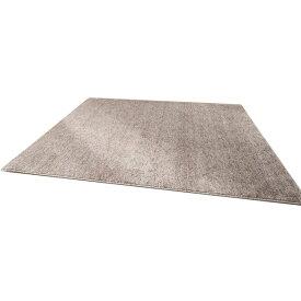 ファイテン(phiten) ラグマット(約190×約190cm) BE746000