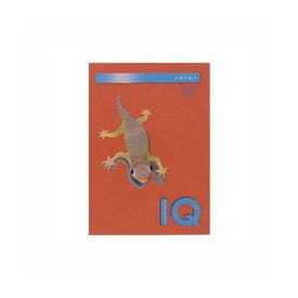 (業務用セット) 伊東屋 バイオトップカラー A4判 500枚入 80g/m2 BT519 ブリックレッド 【×2セット】