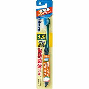 小林製薬 生葉歯間に入るブラシ コンパクト ふつう1本 (0925-0304)