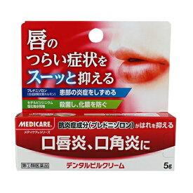 【第(2)類医薬品】[森下仁丹]メディケアデンタルピルクリーム 5g