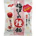 [ノーベル]梅ぼしの種飴 30g/梅干しの種飴/梅干しのたね飴/梅ぼしのたね飴/梅ぼしのタネ飴/梅干しのタネ飴