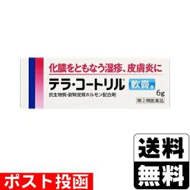 【第(2)類医薬品】■ポスト投函■テラ コートリル軟膏a 6g