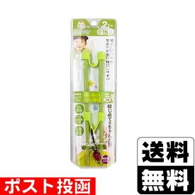 【数量限定】■ポスト投函■ののじ はじめてのちゃんと箸 SS 16cm グリーン