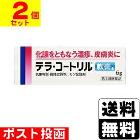 【第(2)類医薬品】■ポスト投函■テラ コートリル軟膏a 6g【2個セット】