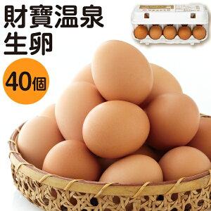 財寶温泉 生 卵 40個 (10個 4パック) 送料無料 [濃厚 卵黄 鹿児島県産 たまご 玉子 鶏卵]