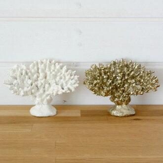 珊瑚的題材(2色展開)(6萬4240-64241)
