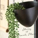 グリーンネックレス フェイクグリーン (66370) 【観葉植物 吊るす 垂らす 壁掛け インテリア 雑貨 エアープランツ 多…
